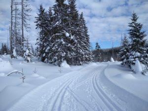 Se skripty na lyže, aneb kde a jak se dobře učit