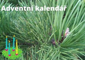 Adventní kalendář – mapa na klidnou cestu předvánočním obdobím